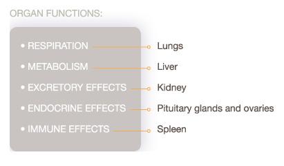 organ_functions